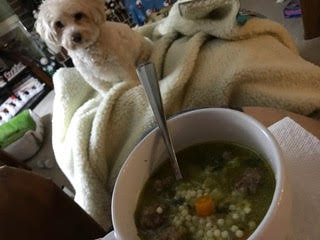 puppy-blanket-and-soup